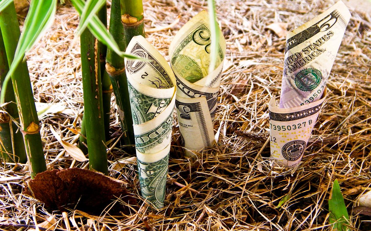 How to Allocate and Optimize your Retirement Portfolio for Maximum Returns.